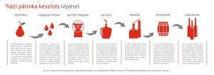 Ismerd meg a házipálinka főzés 7 lépését a Partyőrség | Pálinkakommandó infografikája révén