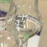 Pálinkafőzők versenye Gyulán